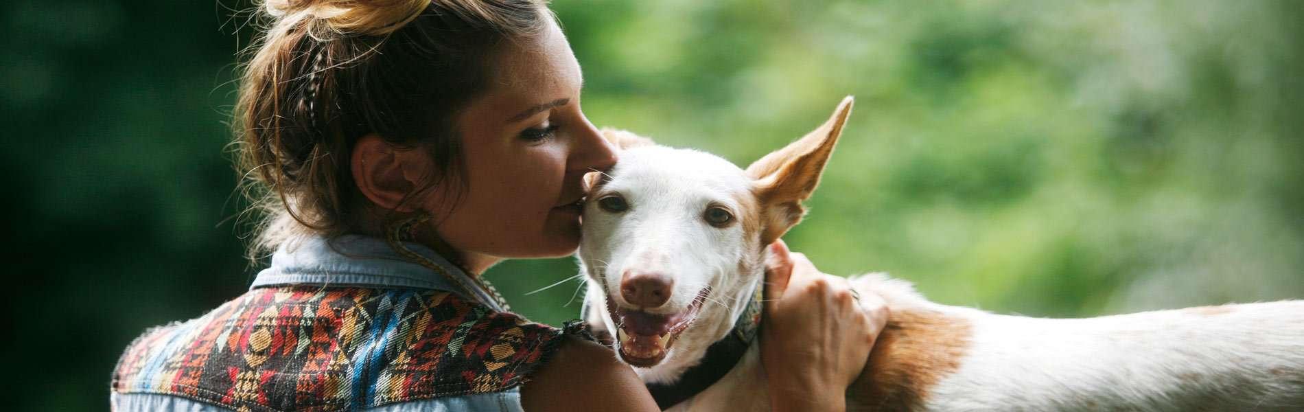 Tierkommunikation Linda Erbe Hund Sinai